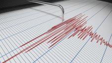 Două cutremure înregistrate în România